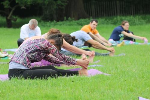 yoga in bushy park Hampton court