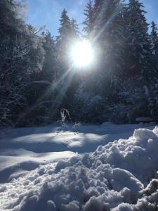 ski yoga retreat 2019